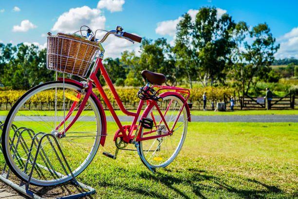 vélo de location